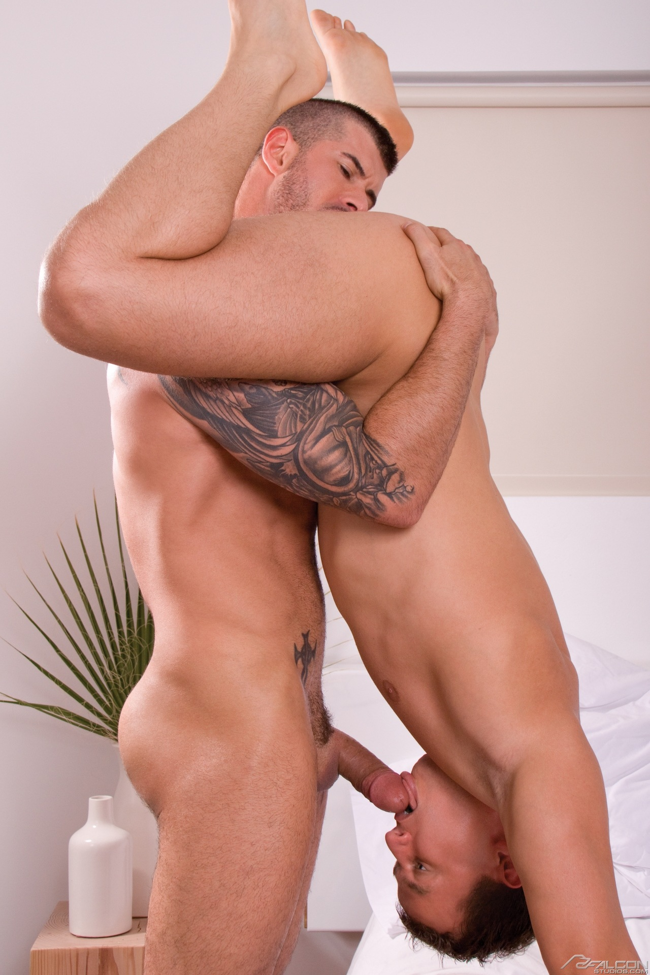 oral sex on man standing position